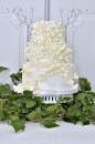 Wedding cake_110