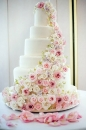 Wedding cake_144