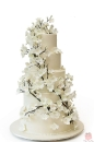 Wedding cake_148