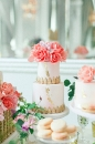 Wedding cake_151