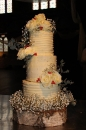 Wedding cake_152