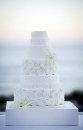 Wedding cake_163