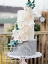 Wedding cake_170
