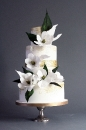 Wedding cake_36