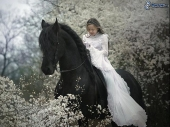 Girls and horse_22